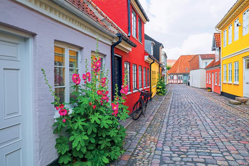 image 1 Danemark 30 as_117053703