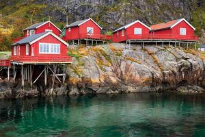 circuit 1 rorbus dans le village a lofoten norvege 43 it 619365650